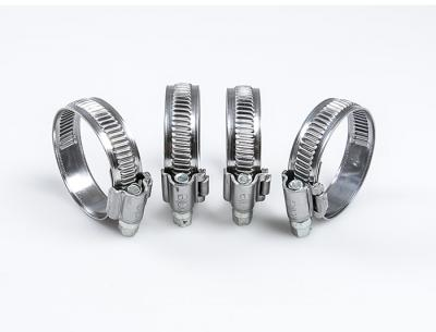 Stainless Steel Hose Clips for Radiator hoses (kit of four)